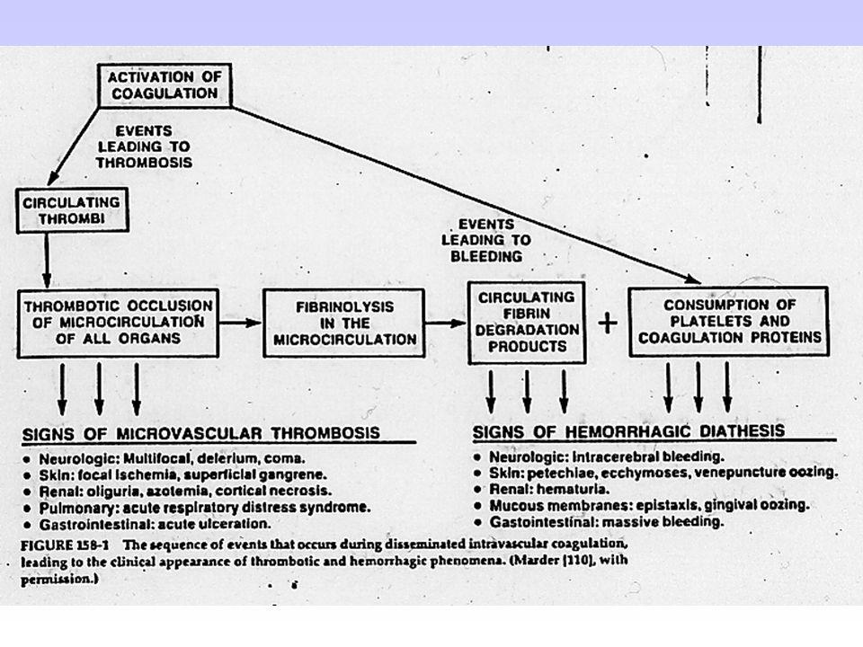 Alcuni effetti sistemici dei tumori: alterazioni del sistema nervoso centrale periferico nel portatore di tumore