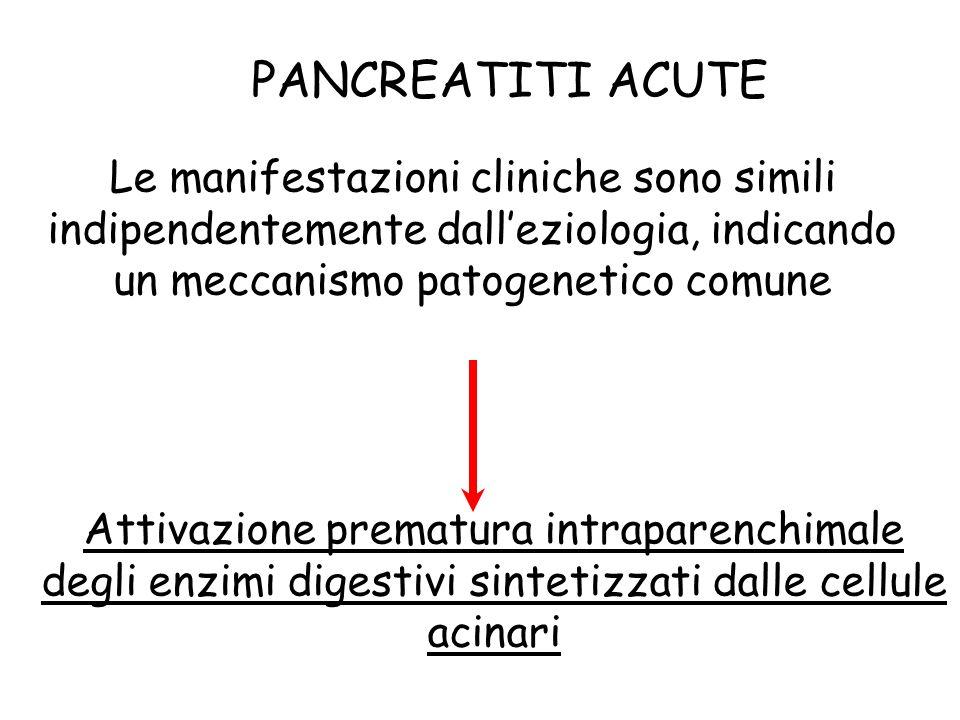 PANCREATITI ACUTE Le manifestazioni cliniche sono simili indipendentemente dalleziologia, indicando un meccanismo patogenetico comune Attivazione prematura intraparenchimale degli enzimi digestivi sintetizzati dalle cellule acinari