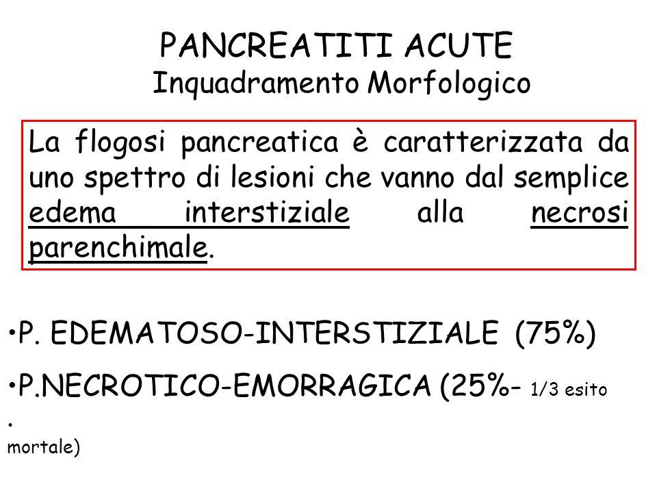 PANCREATITI ACUTE Inquadramento Morfologico La flogosi pancreatica è caratterizzata da uno spettro di lesioni che vanno dal semplice edema interstizia