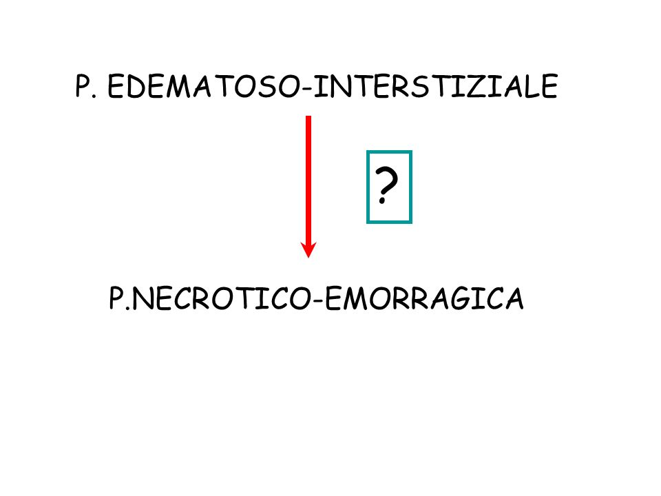 P. EDEMATOSO-INTERSTIZIALE P.NECROTICO-EMORRAGICA ?