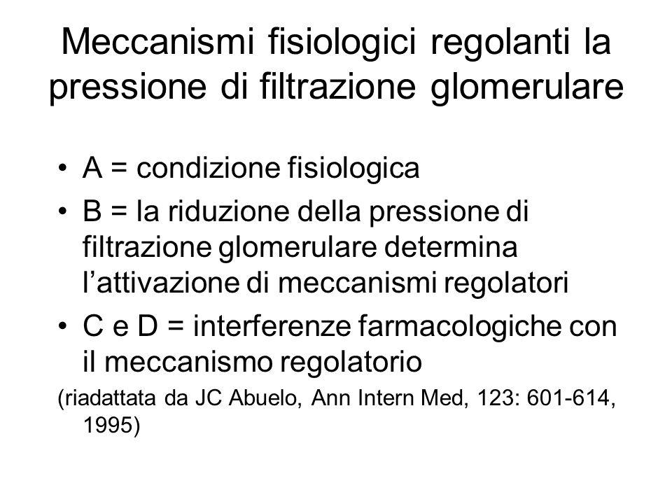 Meccanismi fisiologici regolanti la pressione di filtrazione glomerulare A = condizione fisiologica B = la riduzione della pressione di filtrazione glomerulare determina lattivazione di meccanismi regolatori C e D = interferenze farmacologiche con il meccanismo regolatorio (riadattata da JC Abuelo, Ann Intern Med, 123: 601-614, 1995)