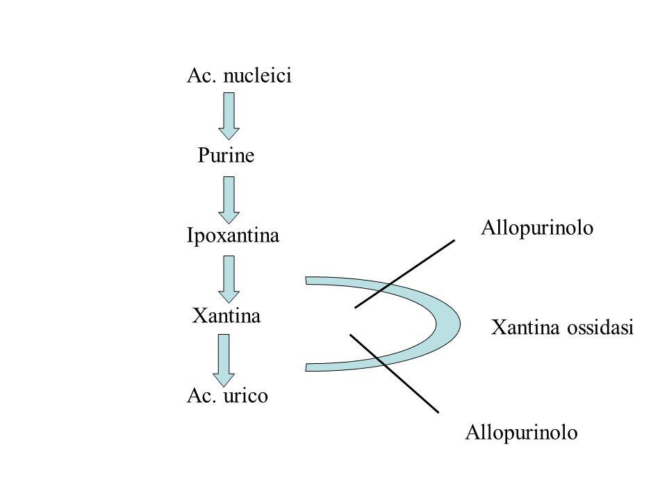Ac. nucleici Purine Ipoxantina Xantina Ac. urico Xantina ossidasi Allopurinolo