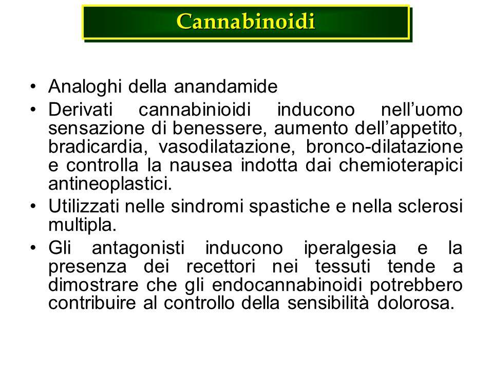 Cannabinoidi Analoghi della anandamide Derivati cannabinioidi inducono nelluomo sensazione di benessere, aumento dellappetito, bradicardia, vasodilata