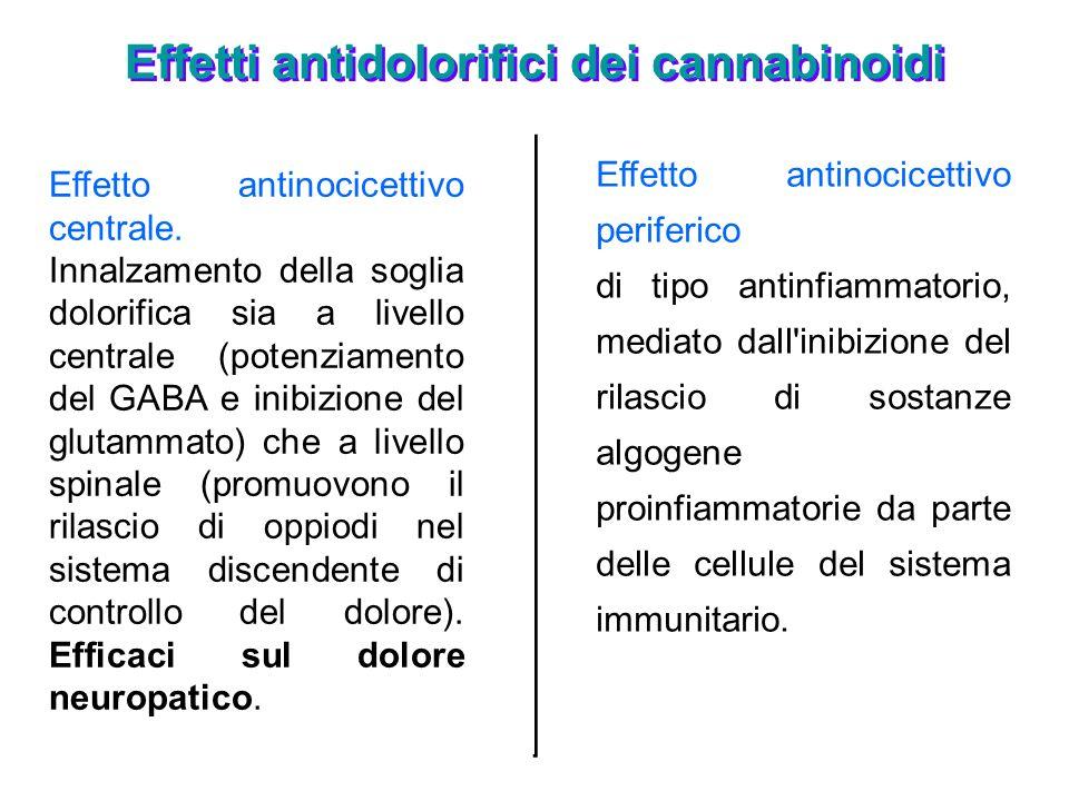 Effetti antidolorifici dei cannabinoidi Effetto antinocicettivo centrale. Innalzamento della soglia dolorifica sia a livello centrale (potenziamento d