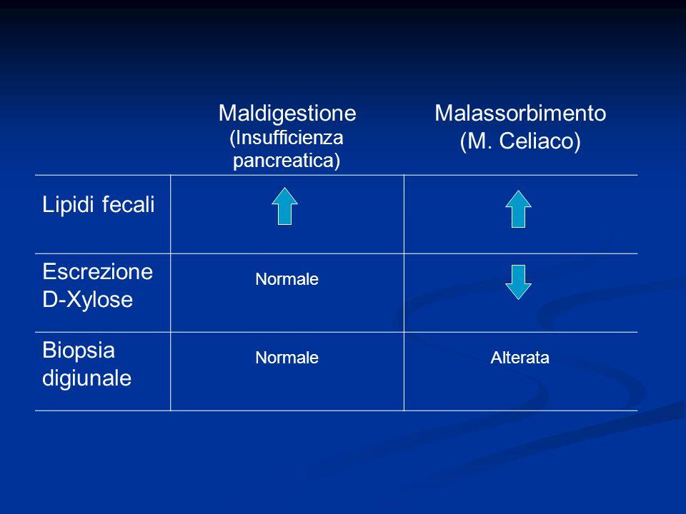 Maldigestione (Insufficienza pancreatica) Malassorbimento (M. Celiaco) Lipidi fecali Escrezione D-Xylose Normale Biopsia digiunale NormaleAlterata