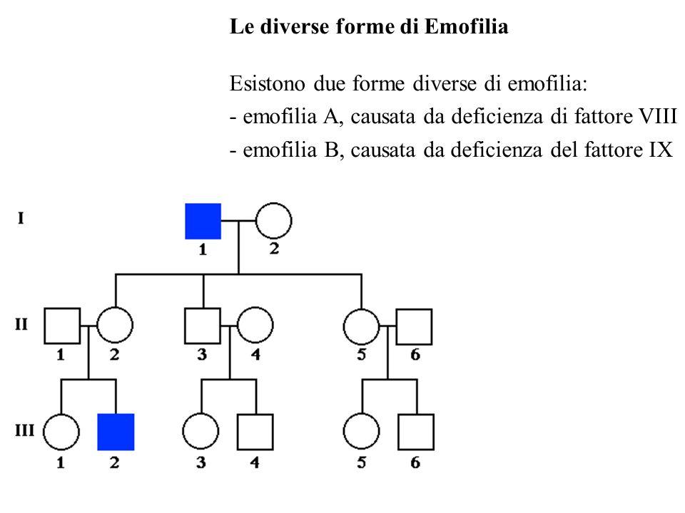 Le diverse forme di Emofilia Esistono due forme diverse di emofilia: - emofilia A, causata da deficienza di fattore VIII - emofilia B, causata da defi