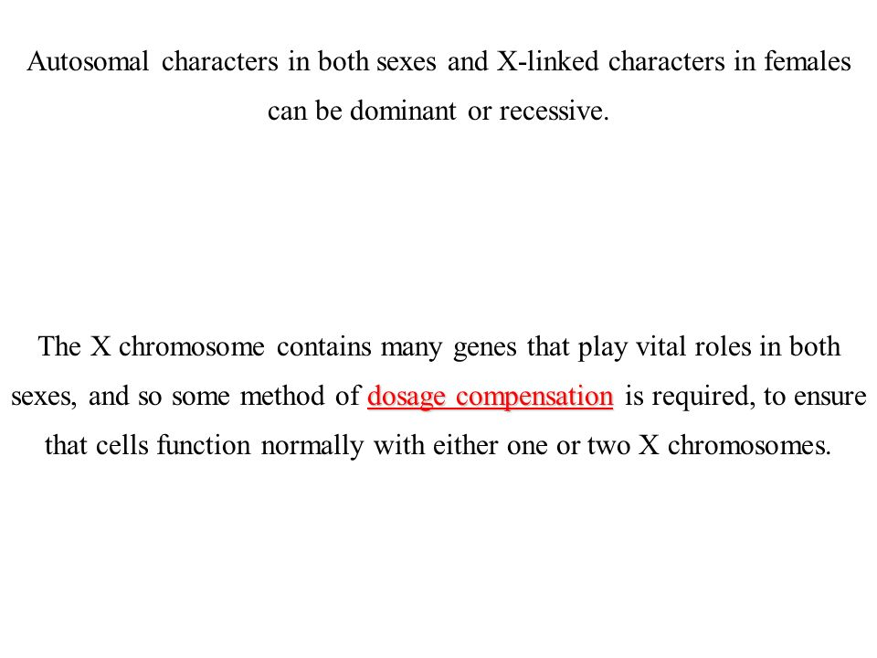 Il cromosoma di X contiene centinaia dei geni che non hanno a che fare direttamente con il sesso l eredità di questi geni segue specifiche regole, Infatti I maschi hanno un unico cromosoma X Quasi tutti i geni dellX non hanno un gene corrispondente nellY Tutti i geni sullX, anche se recessivi nelle femmine, saranno espressi nei maschi.