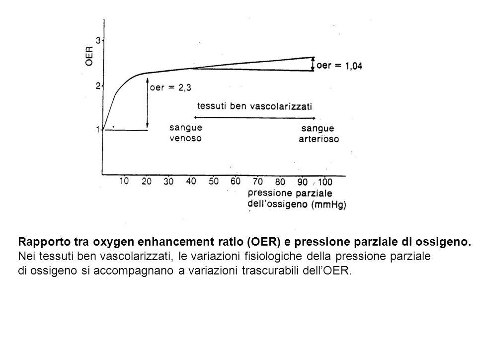 Rapporto tra oxygen enhancement ratio (OER) e pressione parziale di ossigeno. Nei tessuti ben vascolarizzati, le variazioni fisiologiche della pressio
