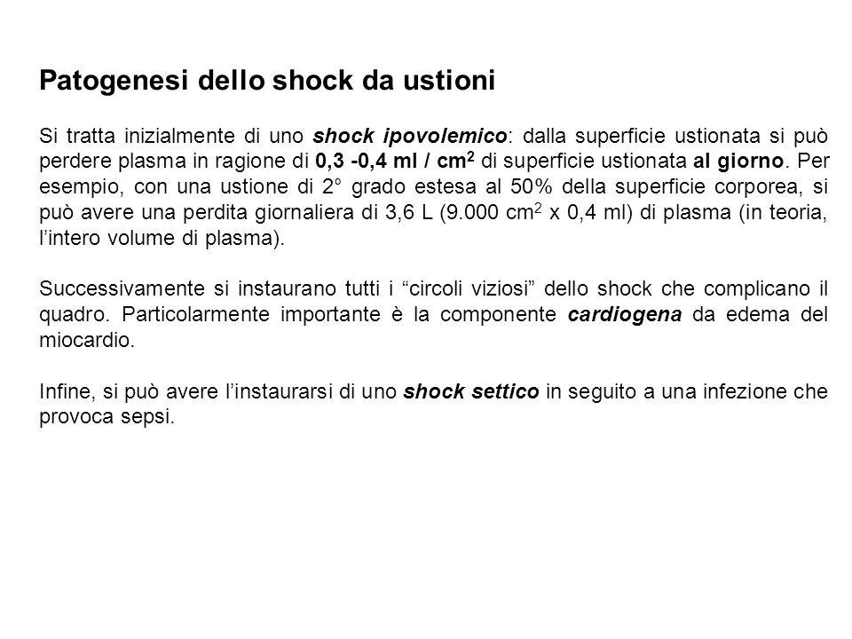 Patogenesi dello shock da ustioni Si tratta inizialmente di uno shock ipovolemico: dalla superficie ustionata si può perdere plasma in ragione di 0,3