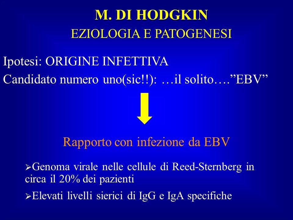 M. DI HODGKIN EZIOLOGIA E PATOGENESI Ipotesi: ORIGINE INFETTIVA Candidato numero uno(sic!!): …il solito….EBV Rapporto con infezione da EBV Genoma vira