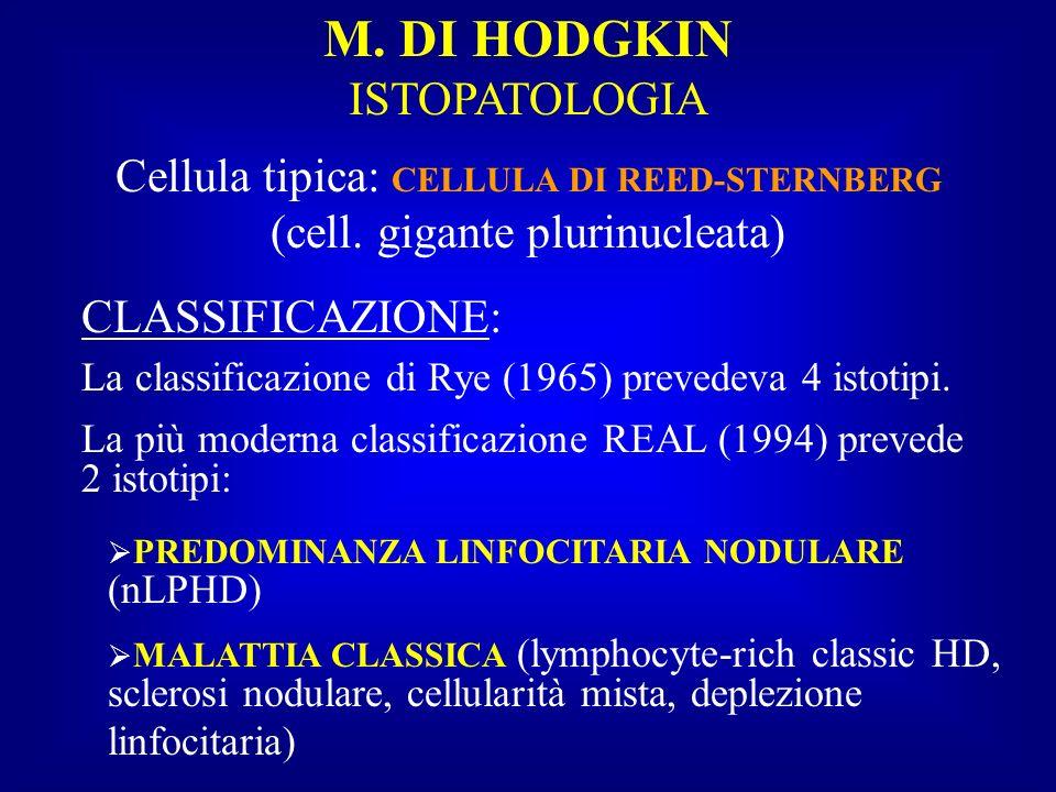 M. DI HODGKIN ISTOPATOLOGIA Cellula tipica: CELLULA DI REED-STERNBERG (cell. gigante plurinucleata) CLASSIFICAZIONE: La classificazione di Rye (1965)