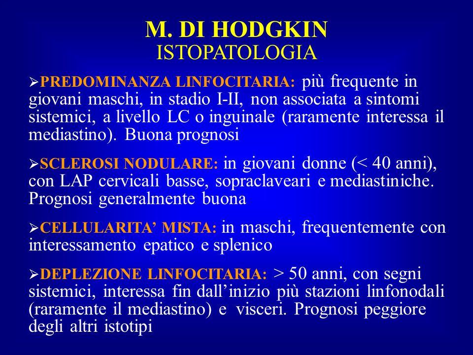 M. DI HODGKIN ISTOPATOLOGIA PREDOMINANZA LINFOCITARIA: più frequente in giovani maschi, in stadio I-II, non associata a sintomi sistemici, a livello L