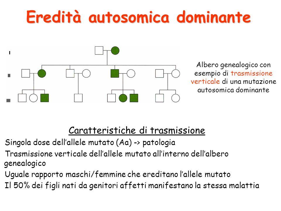 Albero genealogico con esempio di trasmissione verticale di una mutazione autosomica dominante Caratteristiche di trasmissione Singola dose dellallele