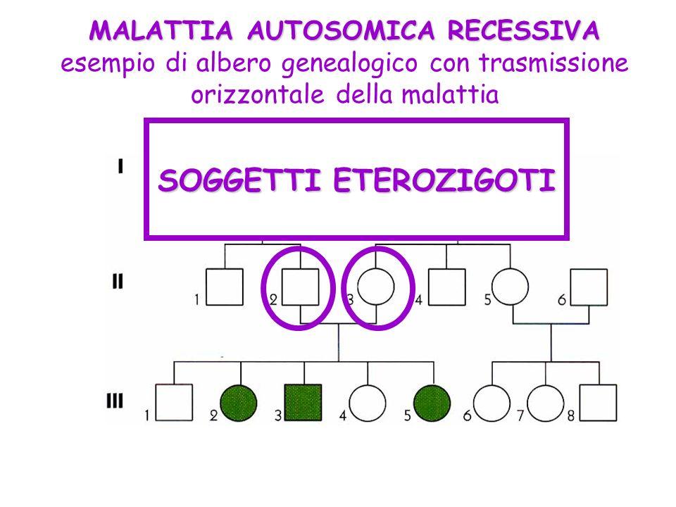 MALATTIA AUTOSOMICA RECESSIVA MALATTIA AUTOSOMICA RECESSIVA esempio di albero genealogico con trasmissione orizzontale della malattia SOGGETTI ETEROZI