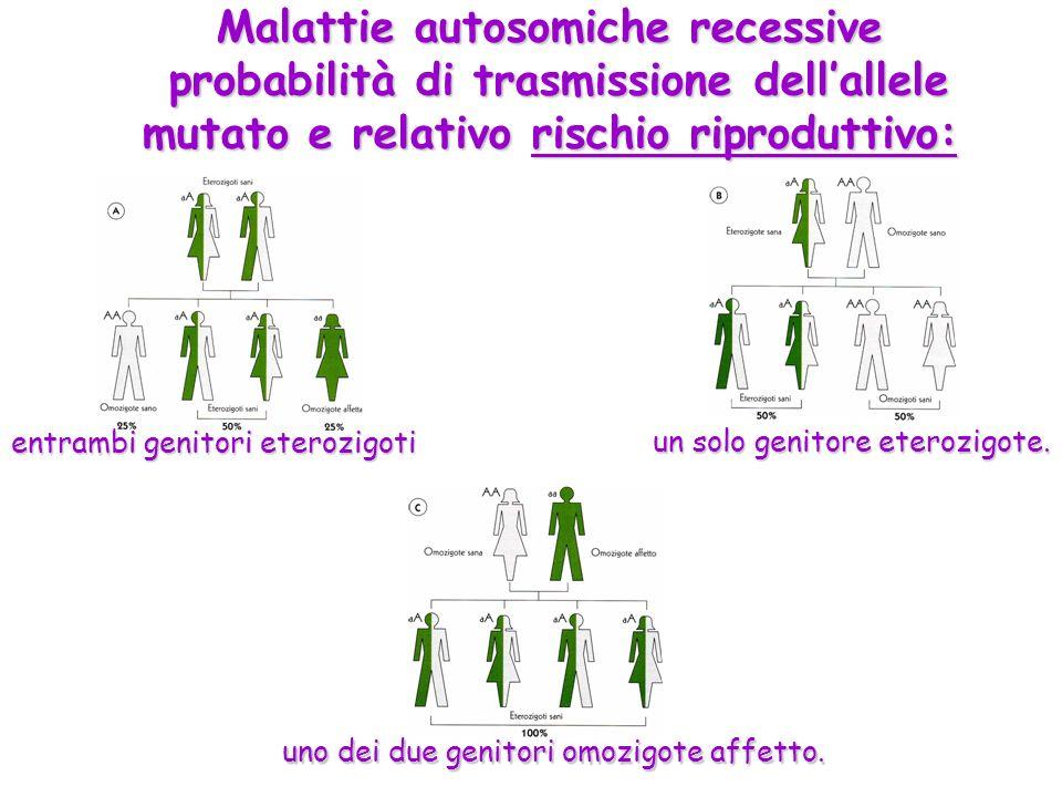 Malattie autosomiche recessive probabilità di trasmissione dellallele mutato e relativo rischio riproduttivo: entrambi genitori eterozigoti un solo ge