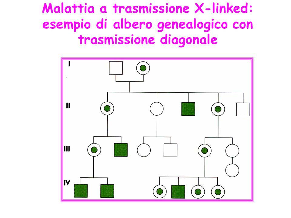Malattia a trasmissione X-linked: esempio di albero genealogico con trasmissione diagonale