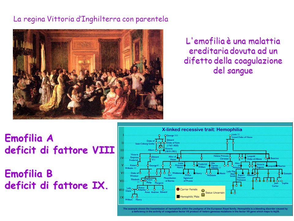 La regina Vittoria dInghilterra con parentela L'emofilia è una malattia ereditaria dovuta ad un difetto della coagulazione del sangue Emofilia A defic