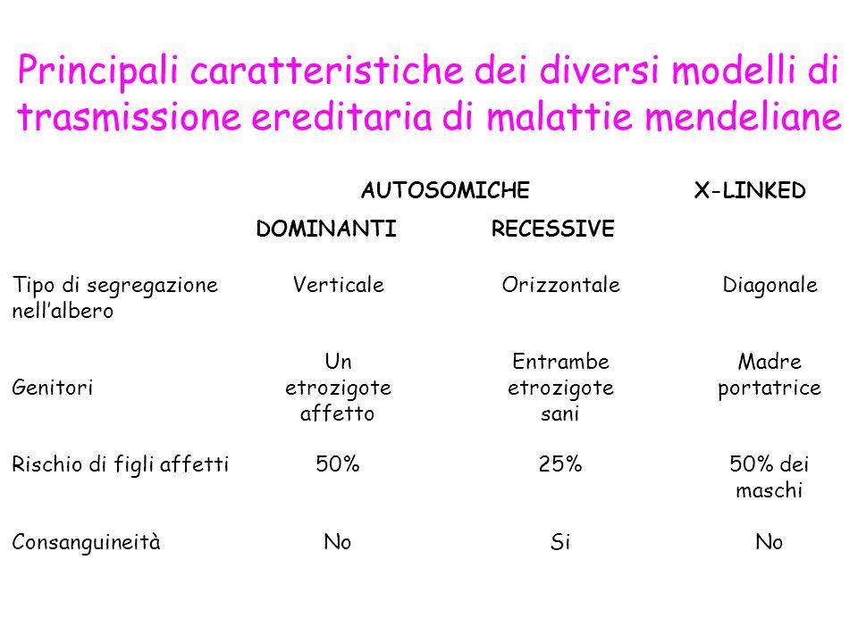 Principali caratteristiche dei diversi modelli di trasmissione ereditaria di malattie mendeliane AUTOSOMICHE DOMINANTI RECESSIVE X-LINKED Tipo di segr