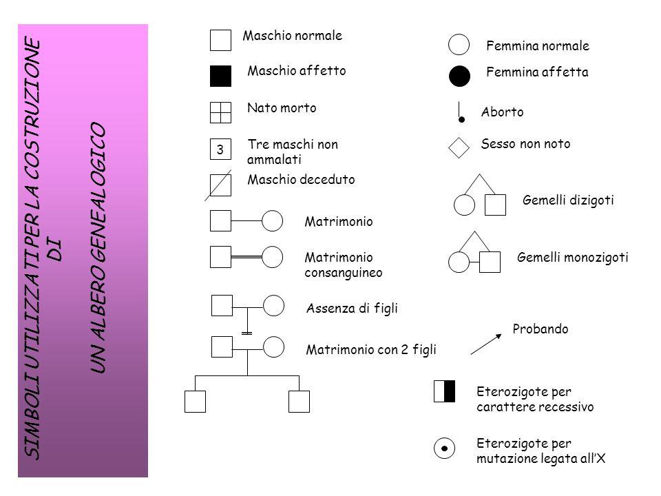 Assenza di trasmissione da maschio malato a figlio maschio (il maschio non trasmette lX ai figli maschi): Probabilità di un figlio maschio malato= 0 X Y X X Y a A X X A A a...