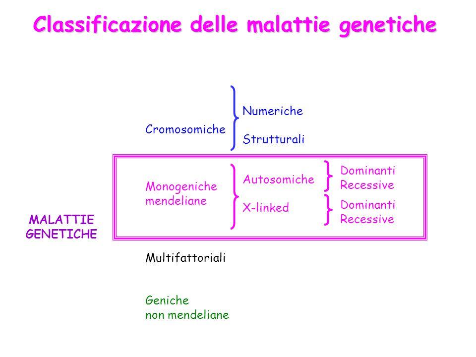 Classificazione delle malattie genetiche MALATTIE GENETICHE Cromosomiche Monogeniche mendeliane Multifattoriali Geniche non mendeliane Numeriche Strut