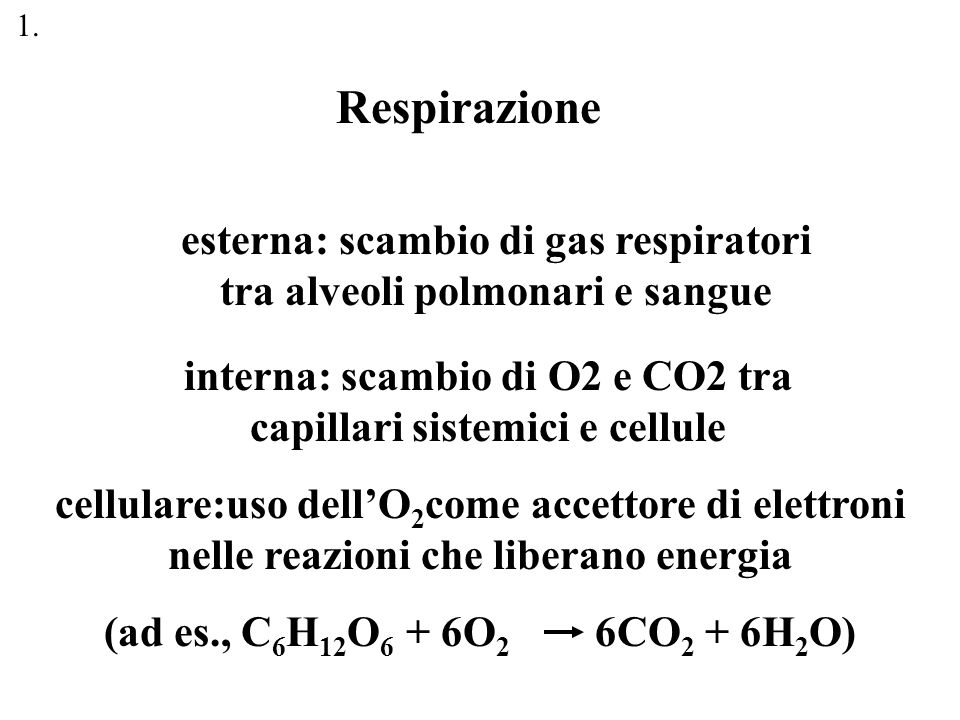 Respirazione esterna: scambio di gas respiratori tra alveoli polmonari e sangue interna: scambio di O2 e CO2 tra capillari sistemici e cellule cellula