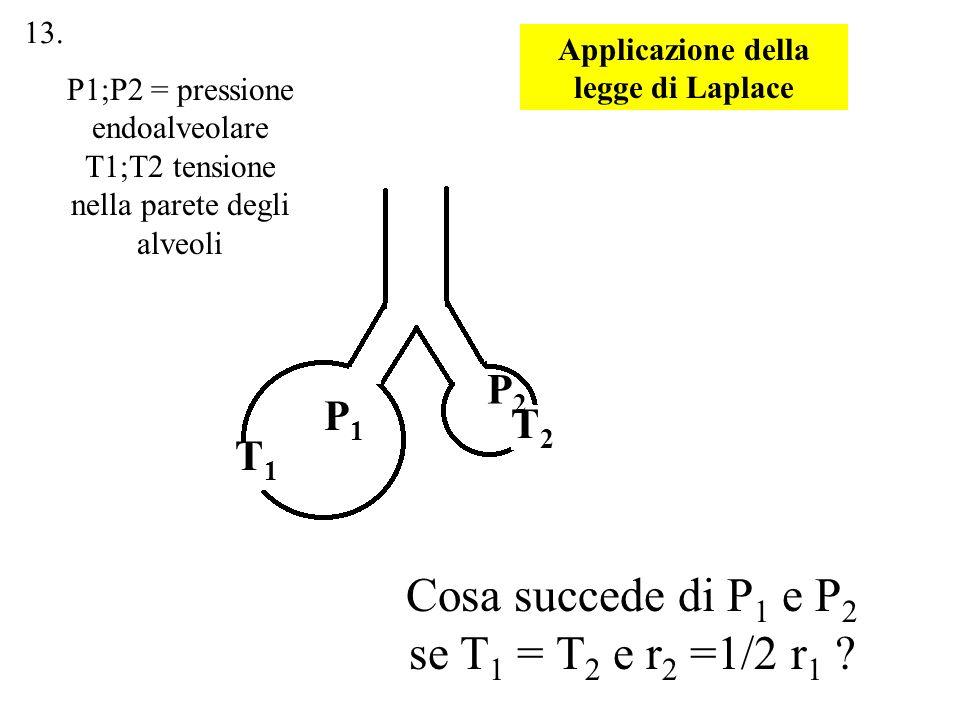 P1P1 P2P2 Cosa succede di P 1 e P 2 se T 1 = T 2 e r 2 =1/2 r 1 ? T1T1 T2T2 P1;P2 = pressione endoalveolare T1;T2 tensione nella parete degli alveoli