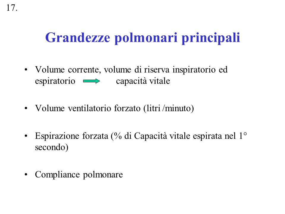 Grandezze polmonari principali Volume corrente, volume di riserva inspiratorio ed espiratorio capacità vitale Volume ventilatorio forzato (litri /minu