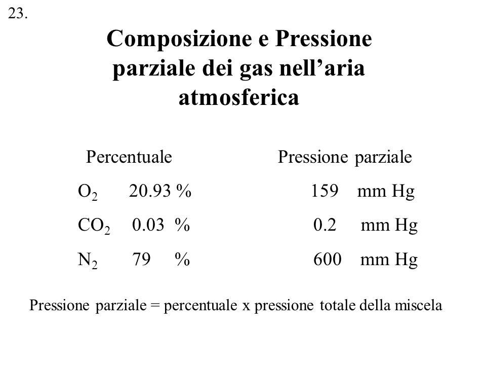 Composizione e Pressione parziale dei gas nellaria atmosferica Percentuale Pressione parziale O 2 20.93 % 159 mm Hg CO 2 0.03 % 0.2 mm Hg N 2 79 % 600