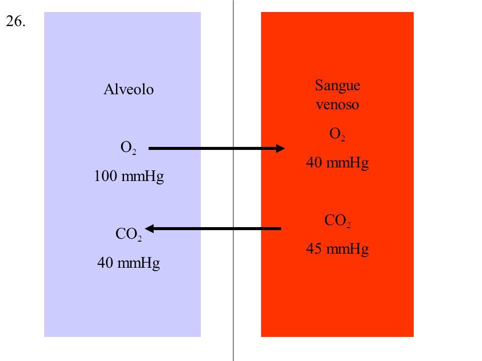 Alveolo O 2 100 mmHg CO 2 40 mmHg Sangue venoso O 2 40 mmHg CO 2 45 mmHg 26.