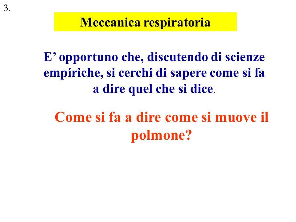 Lanatomia descrive la gabbia toracica come una scatola deformabile che contiene il polmone P [mmHg] Volume [ml] siringa polmone manometro Questa è la prova che il polmone è una struttura elastica Quale è più vicina al vero:la nera o la rossa.