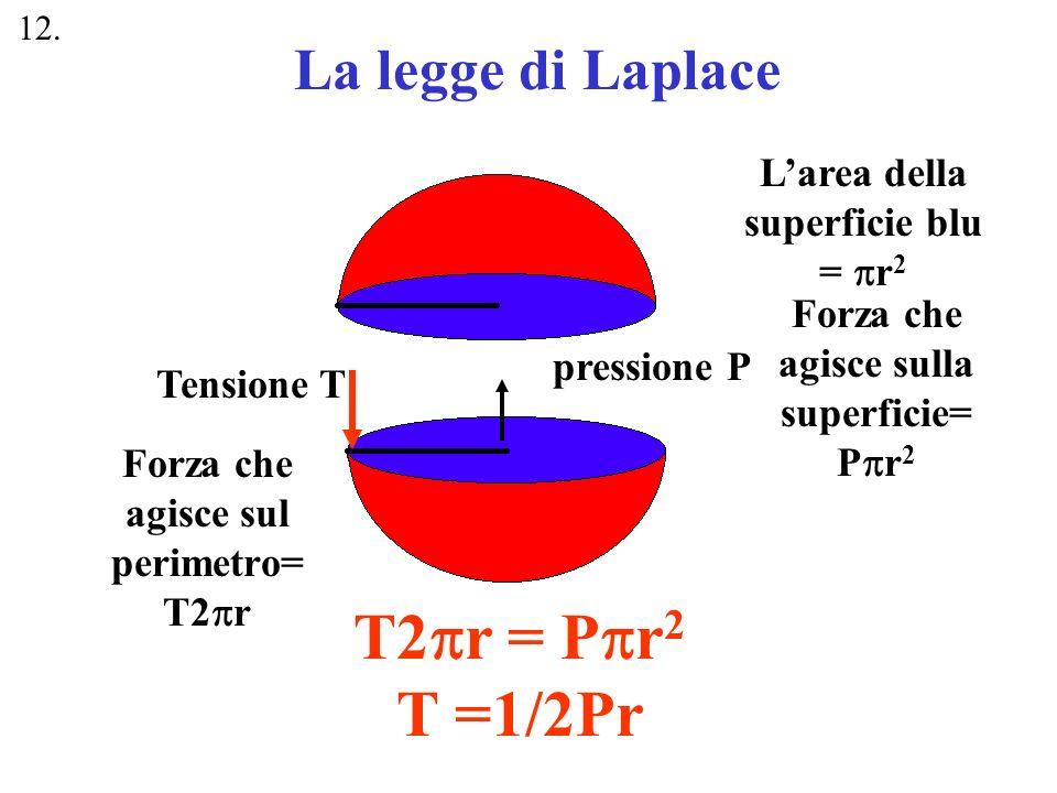 Tensione T Larea della superficie blu = r 2 Forza che agisce sulla superficie= P r 2 Forza che agisce sul perimetro= T2 r pressione P T2 r = P r 2 T =