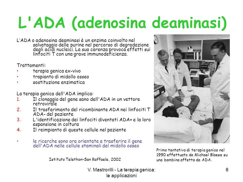 V. Mastrorilli - La terapia genica: le applicazioni 6 LADA o adenosina deaminasi è un enzima coinvolto nel salvataggio delle purine nel percorso di de