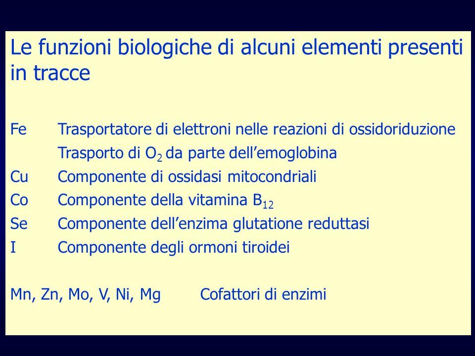 Le funzioni biologiche di alcuni elementi presenti in tracce FeTrasportatore di elettroni nelle reazioni di ossidoriduzione Trasporto di O 2 da parte dellemoglobina CuComponente di ossidasi mitocondriali CoComponente della vitamina B 12 SeComponente dellenzima glutatione reduttasi IComponente degli ormoni tiroidei Mn, Zn, Mo, V, Ni, MgCofattori di enzimi