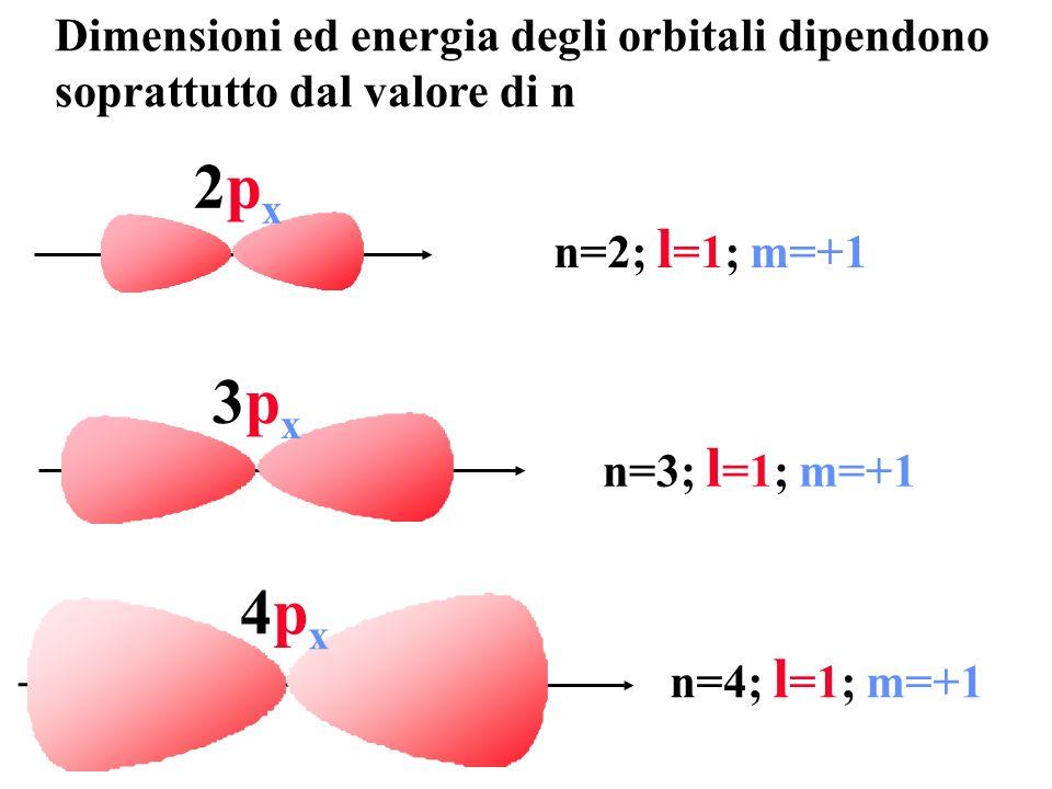 2px2px n=2; l =1; m=+1 3px3px n=3; l =1; m=+1 4px4px n=4; l =1; m=+1 Dimensioni ed energia degli orbitali dipendono soprattutto dal valore di n
