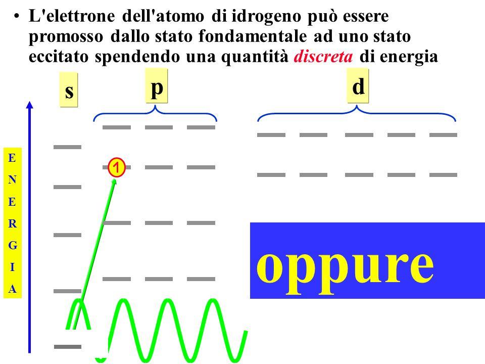 L elettrone dell atomo di idrogeno può essere promosso dallo stato fondamentale ad uno stato eccitato spendendo una quantità discreta di energia ENERGIAENERGIA s pd oppure