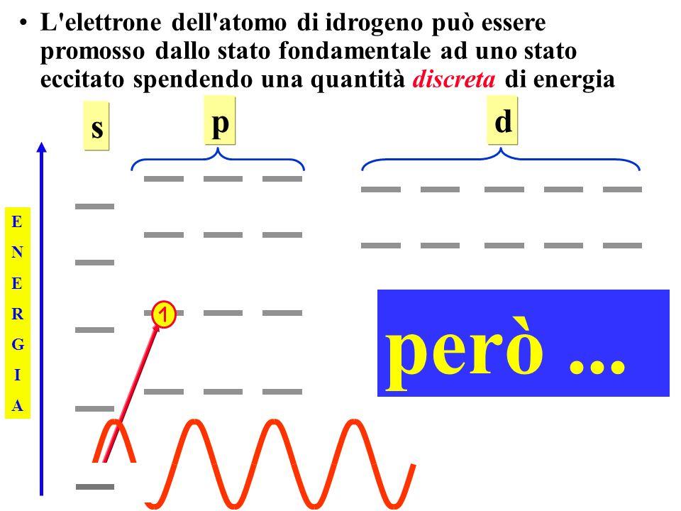 L elettrone dell atomo di idrogeno può essere promosso dallo stato fondamentale ad uno stato eccitato spendendo una quantità discreta di energia ENERGIAENERGIA s pd però...