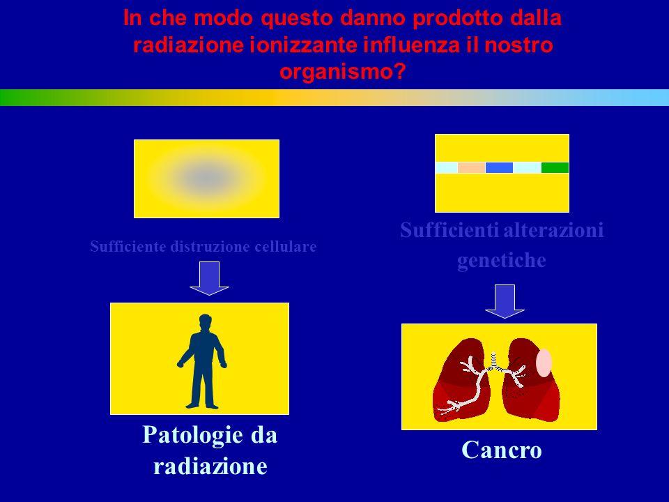In che modo questo danno prodotto dalla radiazione ionizzante influenza il nostro organismo.