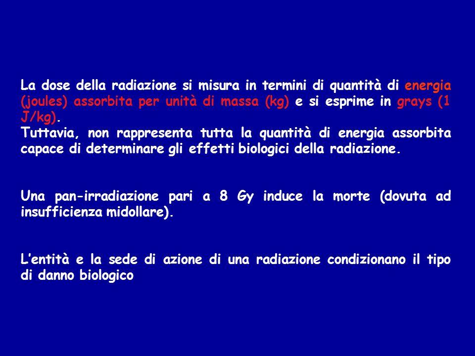 rad = Radiation Absorbed Dose è un unità di misura della dose di radiazione assorbita, pari a 100 erg/gr.