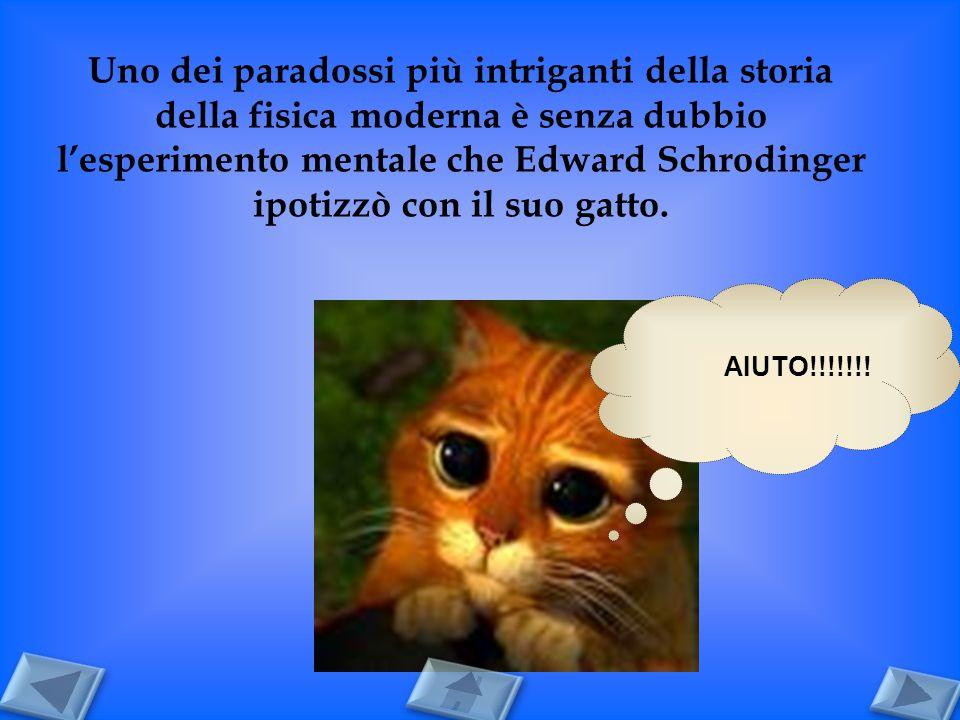 Uno dei paradossi più intriganti della storia della fisica moderna è senza dubbio lesperimento mentale che Edward Schrodinger ipotizzò con il suo gatt
