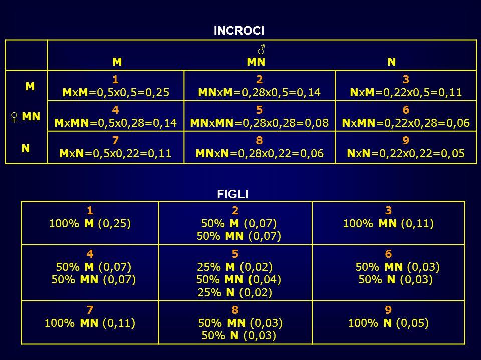 M MN N M MN N 1 MxM=0,5x0,5=0,25 2 MNxM=0,28x0,5=0,14 3 NxM=0,22x0,5=0,11 4 MxMN=0,5x0,28=0,14 5 MNxMN=0,28x0,28=0,08 6 NxMN=0,22x0,28=0,06 7 MxN=0,5x
