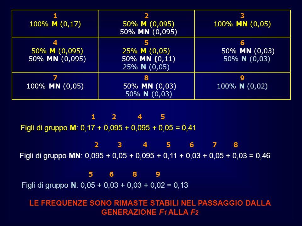 1 100% M (0,17) 2 50% M (0,095) 50% MN (0,095) 3 100% MN (0,05) 4 50% M (0,095) 50% MN (0,095) 5 25% M (0,05) 50% MN (0,11) 25% N (0,05) 6 50% MN (0,0