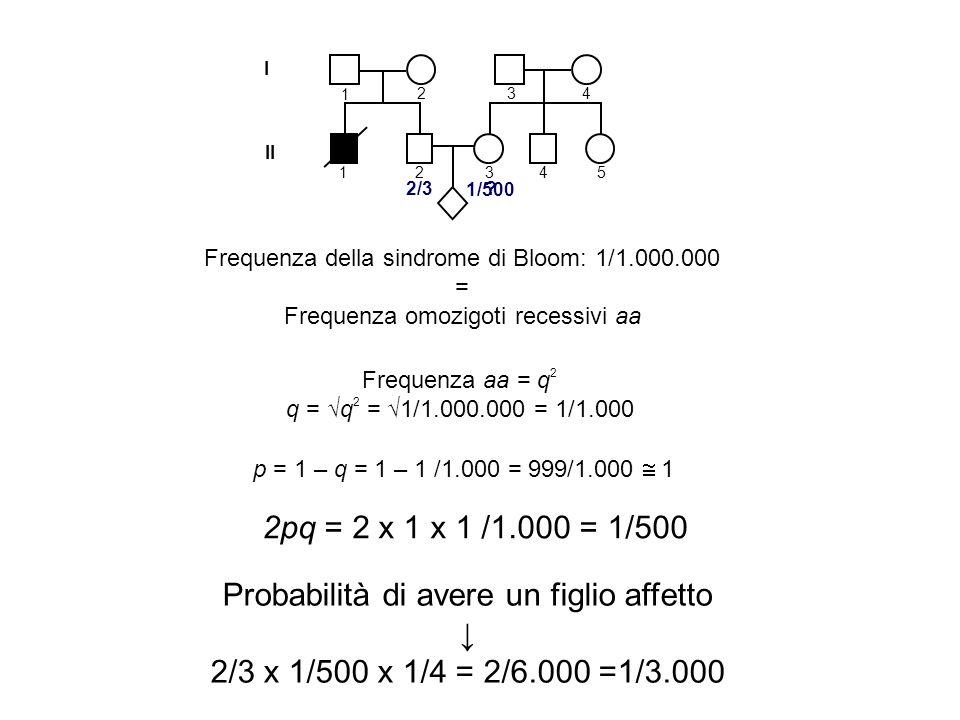 I II 1 2 1 3 4 2345 Frequenza della sindrome di Bloom: 1/1.000.000 = Frequenza omozigoti recessivi aa 2/3 ? Frequenza aa = q 2 q = q 2 = 1/1.000.000 =