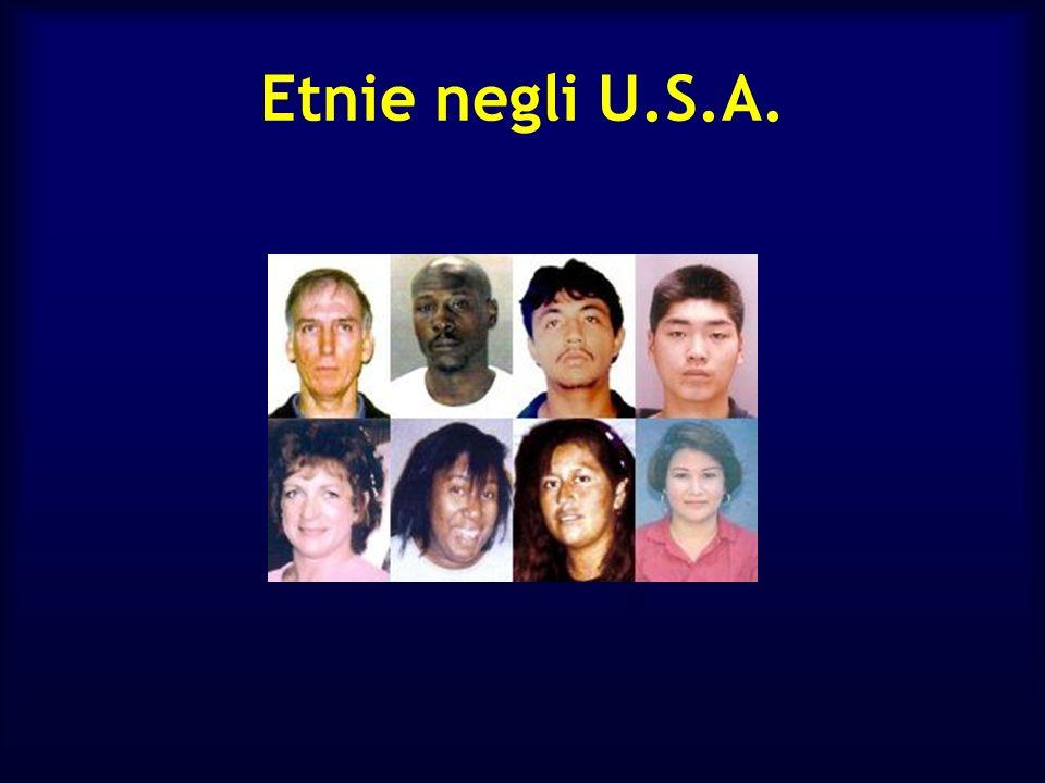 Etnie negli U.S.A.