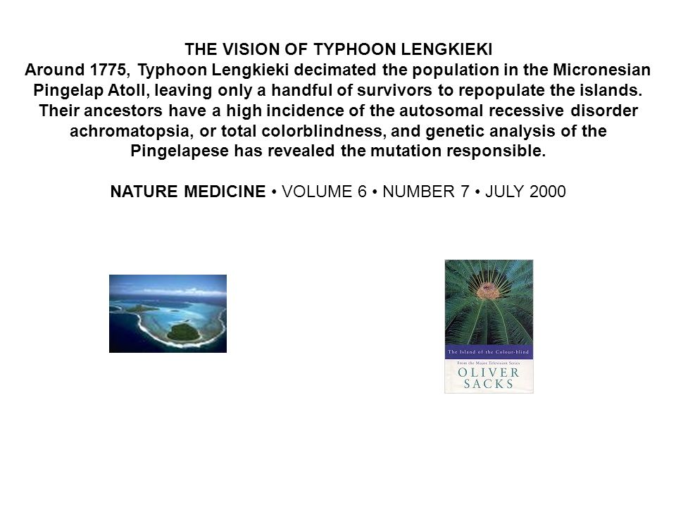 THE VISION OF TYPHOON LENGKIEKI Around 1775, Typhoon Lengkieki decimated the population in the Micronesian Pingelap Atoll, leaving only a handful of s