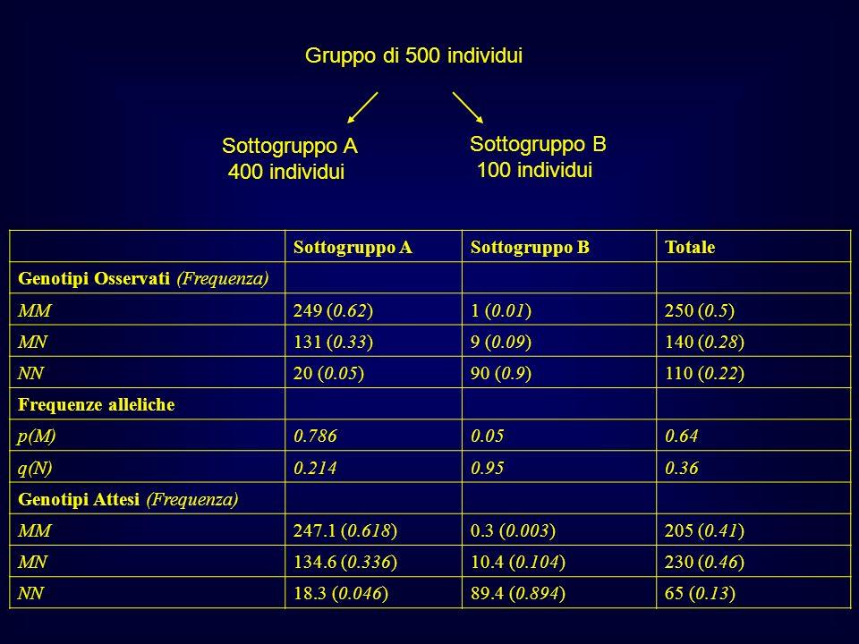 Sottogruppo ASottogruppo BTotale Genotipi Osservati (Frequenza) MM249 (0.62)1 (0.01)250 (0.5) MN131 (0.33)9 (0.09)140 (0.28) NN20 (0.05)90 (0.9)110 (0