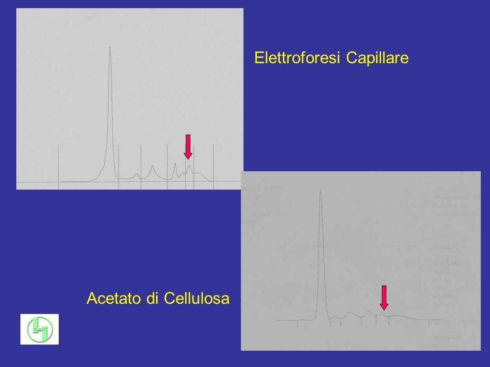 Elettroforesi Capillare Acetato di Cellulosa