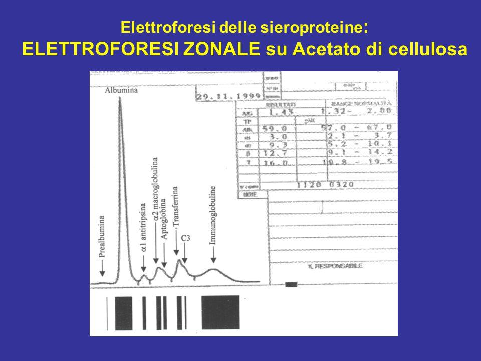 Elettroforesi delle sieroproteine : ELETTROFORESI ZONALE su Acetato di cellulosa