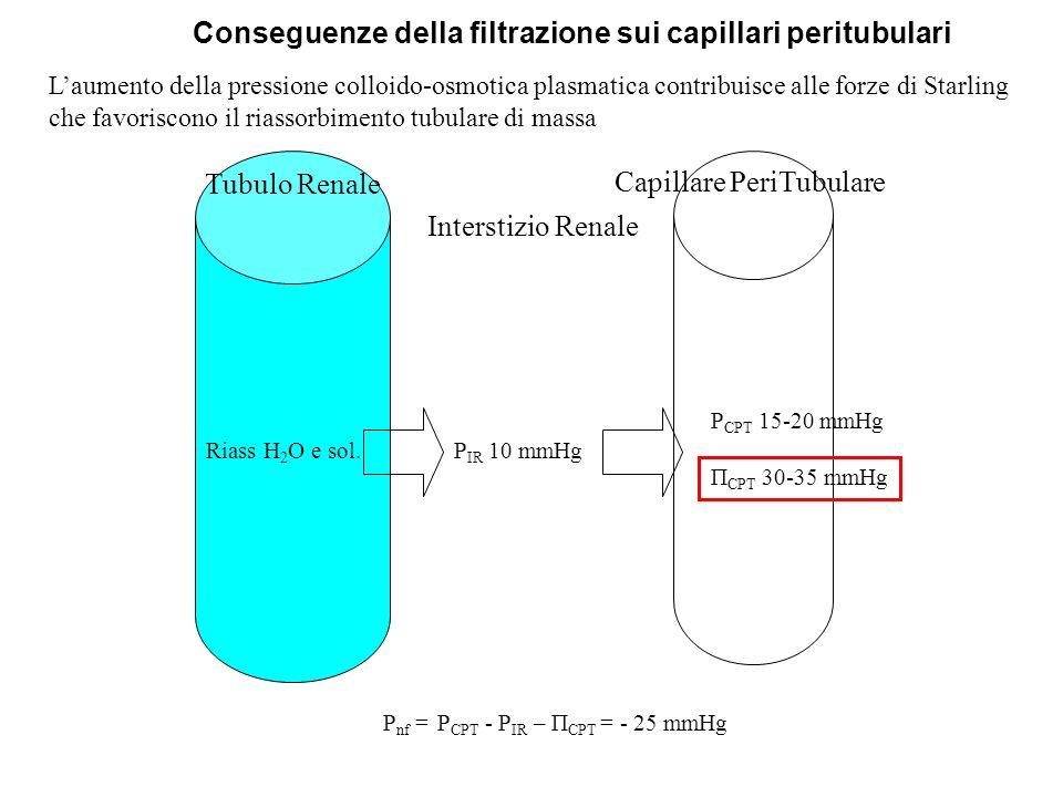 Riass H 2 O e sol. P CPT 15-20 mmHg Π CPT 30-35 mmHg P IR 10 mmHg Tubulo Renale Capillare PeriTubulare Interstizio Renale P nf = P CPT - P IR – Π CPT