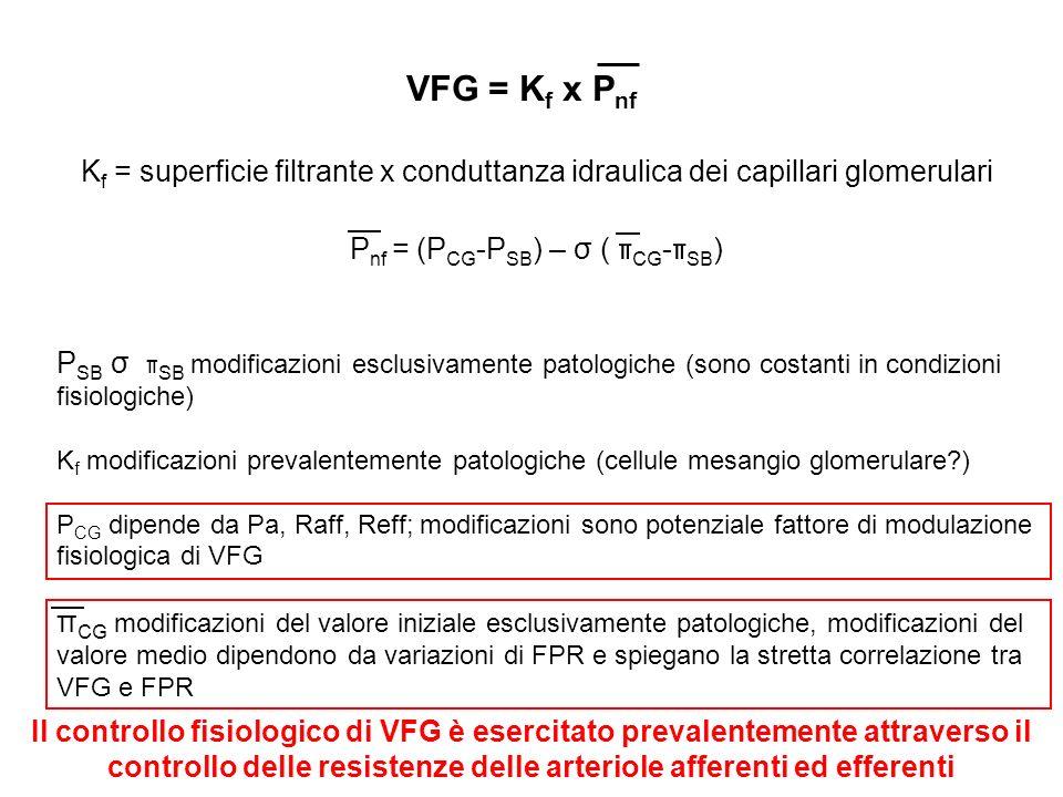 K f = superficie filtrante x conduttanza idraulica dei capillari glomerulari P nf = (P CG -P SB ) – σ ( π CG - π SB ) VFG = K f x P nf P SB σ π SB mod