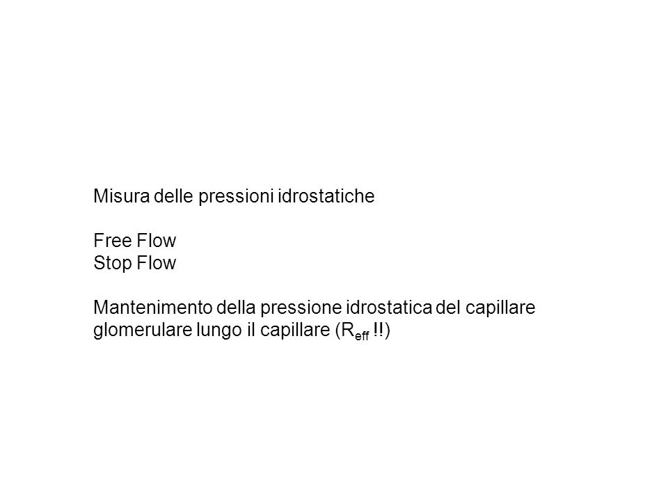 Misura delle pressioni idrostatiche Free Flow Stop Flow Mantenimento della pressione idrostatica del capillare glomerulare lungo il capillare (R eff !